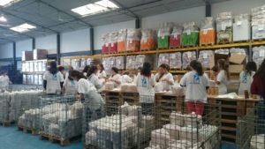 Oporto Voluntar1
